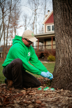 Greenhaven Tree Care Services - Planet Healthcare