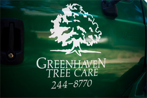 Greenhaven Tree Care Services - Our Company